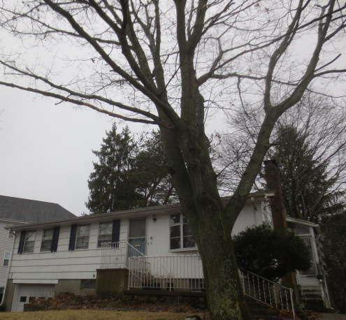 6 Reservoir St, Brockton, MA 02301