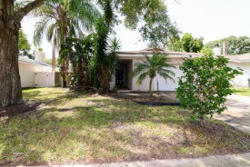 1615 W Orangecrest Ave Palm Harbor, FL 34683