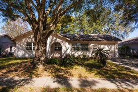 4117 Raccoon Loop New Port Richey, FL 34653