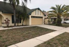 7048 Hollowell Dr Tampa, FL 33634