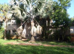 18951SW50 ST Southwest Ranches, FL 33332